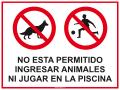 No ingresar animales ni jugar en piscina